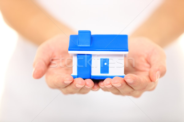 Home - new house concept Stock photo © Maridav
