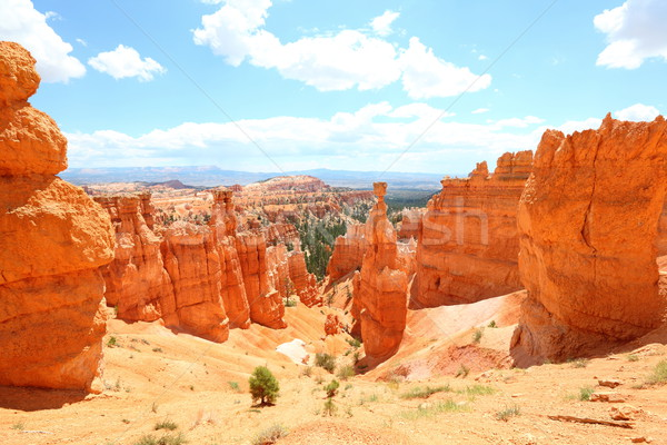 Bryce Canyon National Park landscape, Utah, USA Stock photo © Maridav