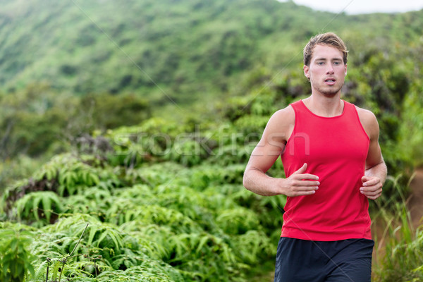 Athlete man runner trail running in nature  Stock photo © Maridav