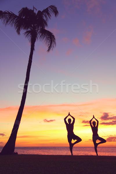 Stok fotoğraf: Sakin · yoga · insanlar · eğitim · gün · batımı · ağaç