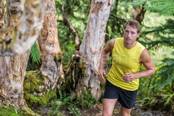 Stockfoto: Parcours · lopen · man · atleet · runner · bos