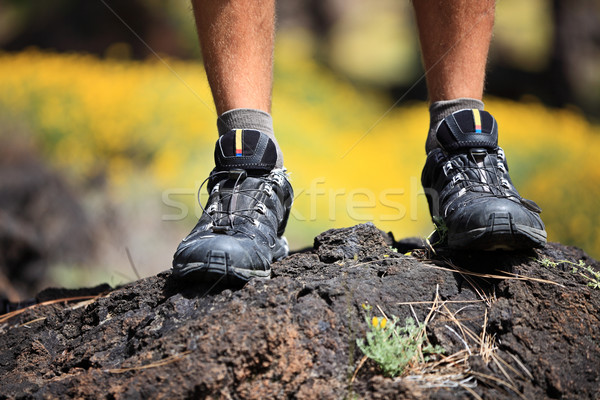 Foto stock: Caminhada · sapatos · outdoors · natureza · deserto