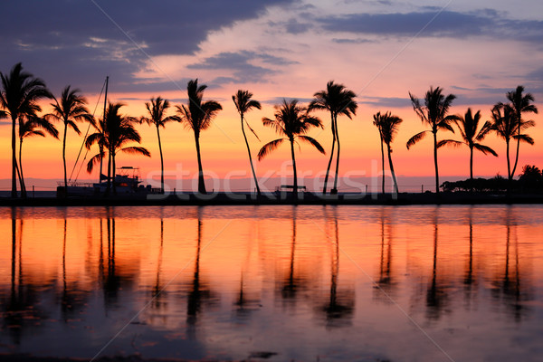 Stock photo: Paradise beach sunset tropical palm trees