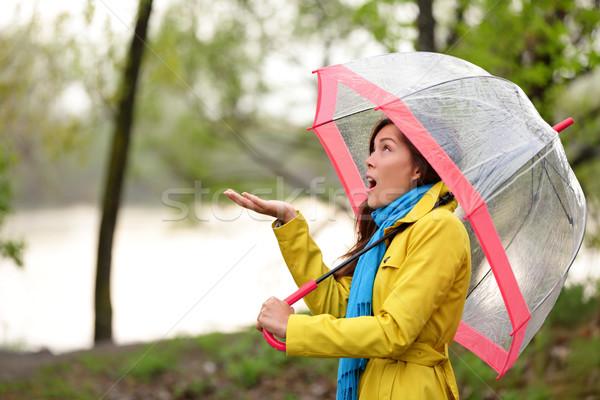 Rain woman walking in the autumn forest Stock photo © Maridav