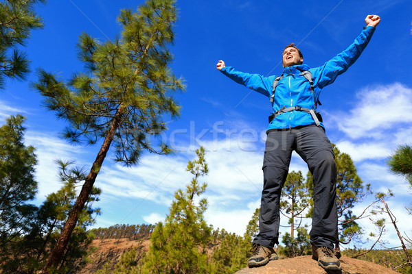 Man hiking reaching summit top cheering in forest Stock photo © Maridav