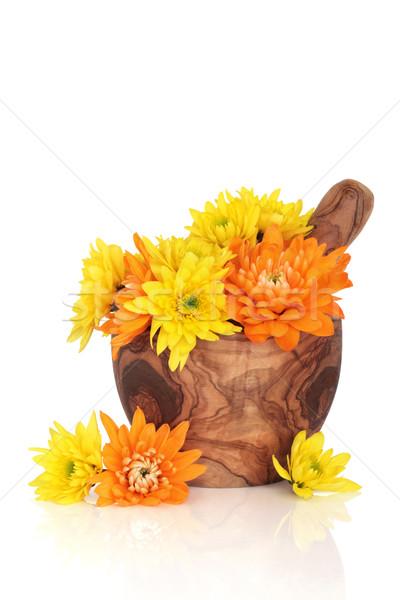 Krizantém virágok használt hagyományos kínai gyógynövény Stock fotó © marilyna