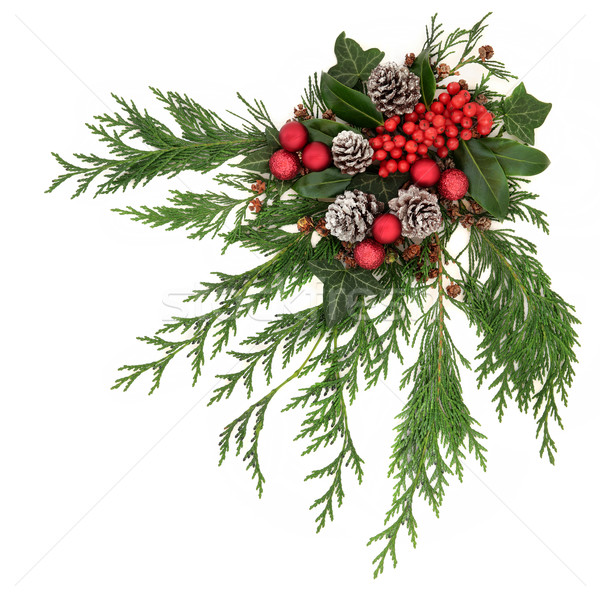 Christmas decoratie feestelijk Rood bessen sneeuw Stockfoto © marilyna