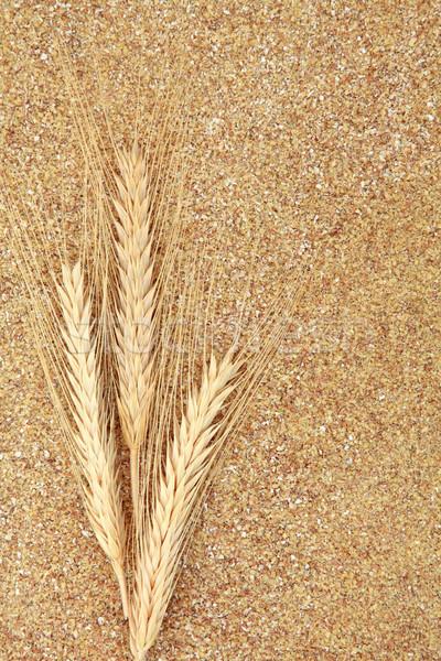 Wheat Germ Stock photo © marilyna