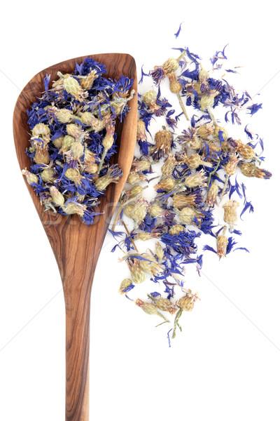 Cornflowers Stock photo © marilyna