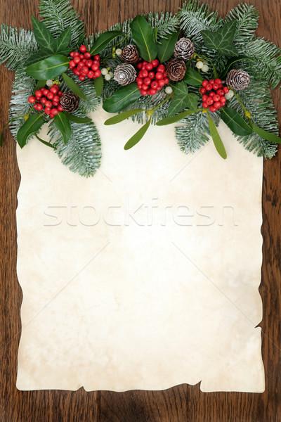 Traditional Winter Greenery Border  Stock photo © marilyna