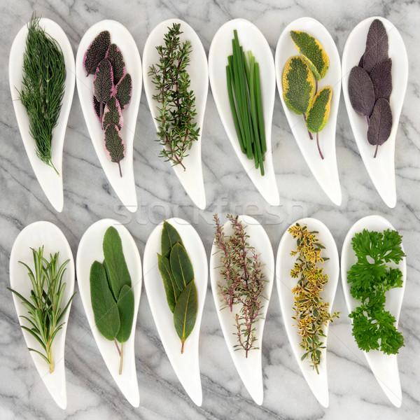 Gyógynövények gyógynövény zsálya rozmaring édeskömény menta Stock fotó © marilyna