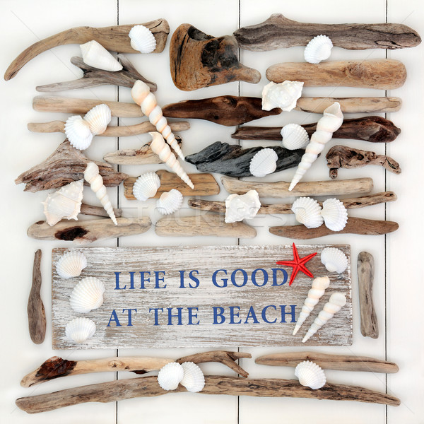 Life is Good at the Beach Stock photo © marilyna