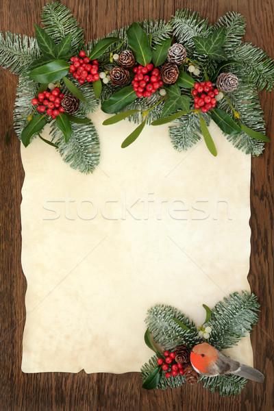 Christmas Traditional Border Stock photo © marilyna