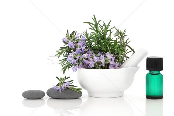 Zdjęcia stock: Rozmaryn · herb · leczenie · uzdrowiskowe · kwiat · porcelana · spa