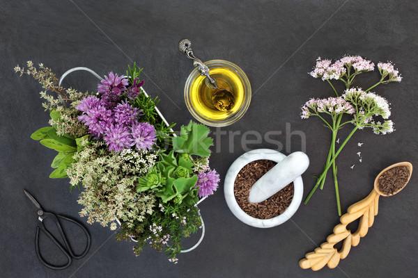 Preparing Herbal Medicine Stock photo © marilyna