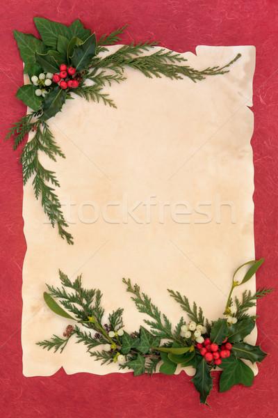 Mistel Grenze Weihnachten dekorativ Efeu Zeder Stock foto © marilyna