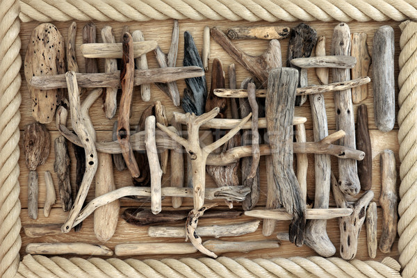 Driftwood streszczenie dąb drewna projektu tle Zdjęcia stock © marilyna