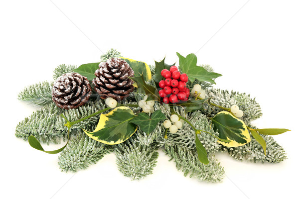 Christmas and Winter Table Decoration Stock photo © marilyna
