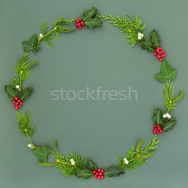 Natural Winter Wreath Garland Stock photo © marilyna
