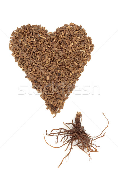 Valerian Herb Root Stock photo © marilyna