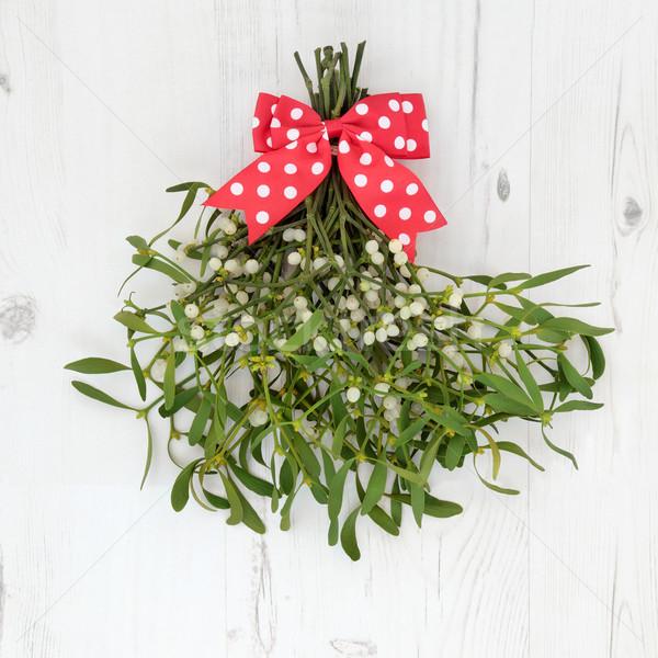 Рождества омела белая украшение красный белый Сток-фото © marilyna