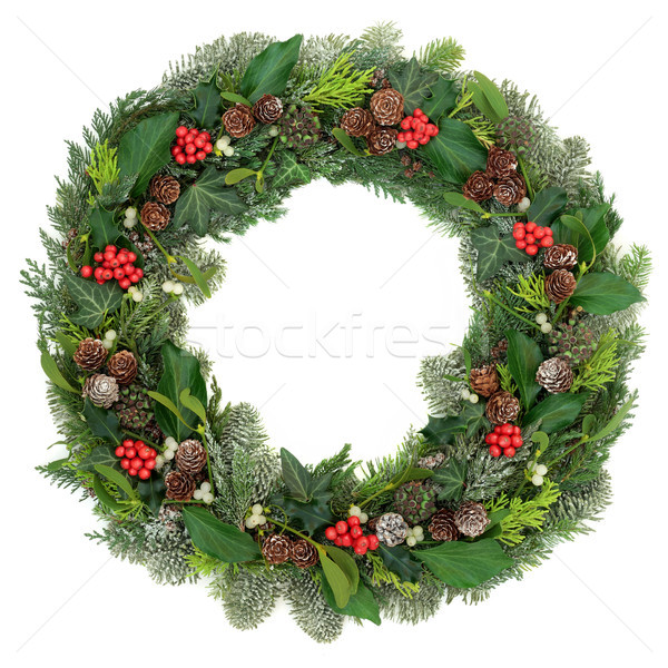 Christmas and Winter Wreath Stock photo © marilyna
