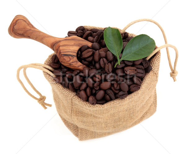 Chicchi di caffè sciolto foglia oliva legno Foto d'archivio © marilyna