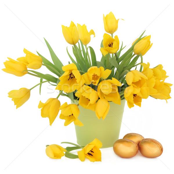 Pasen tijd Geel tulp bloemen groene Stockfoto © marilyna