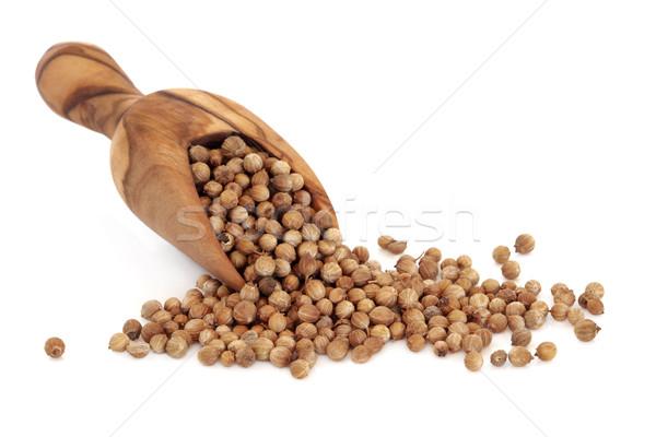 Cilantro semillas de oliva madera cuchara frutas Foto stock © marilyna