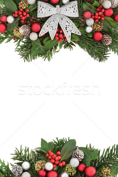 Stock photo: Christmas Flora with Silver Bow Border