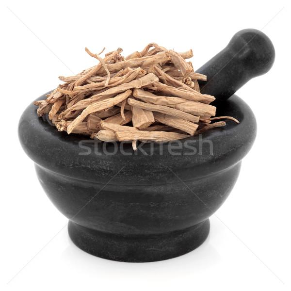 Stock photo: Stellaria Root