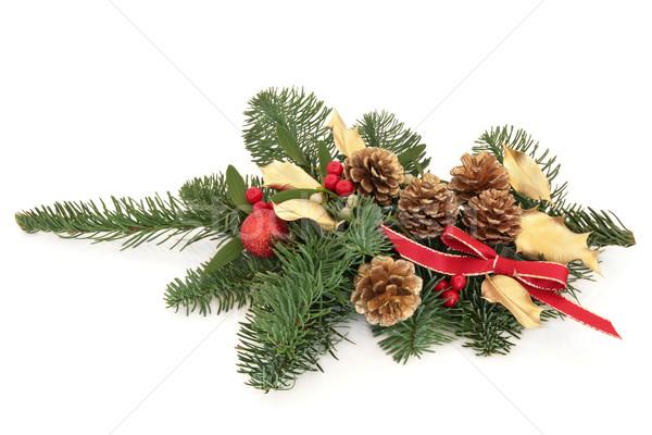 Рождества декоративный спрей украшение ягодные ель Сток-фото © marilyna
