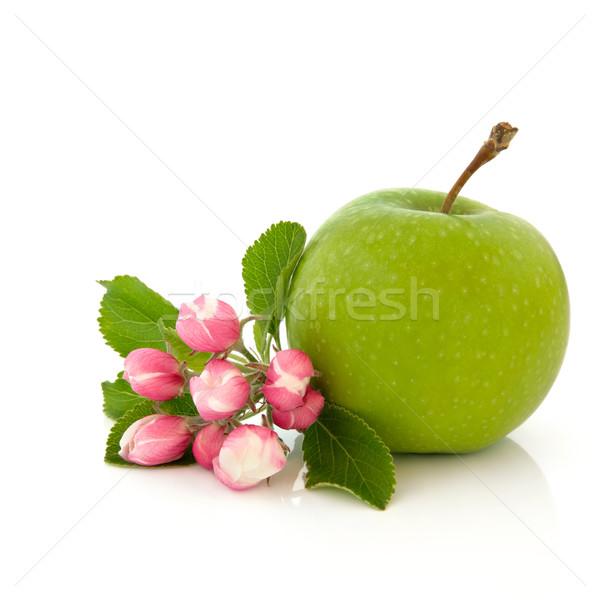 яблоко фрукты цветок Blossom бабушка зеленый Сток-фото © marilyna