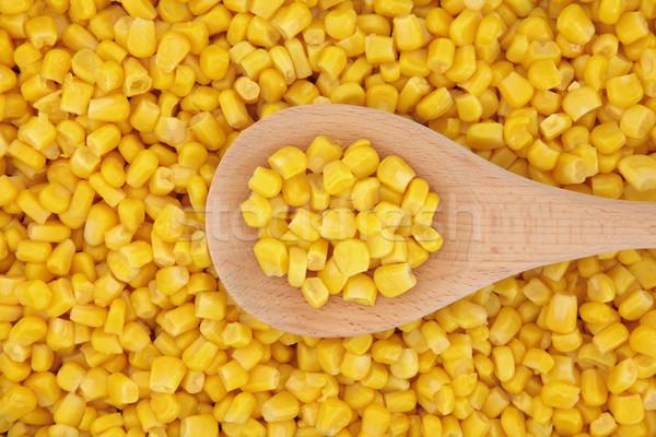 Sweet Corn Stock photo © marilyna