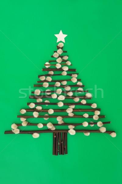 рождественская елка аннотация дизайна киска ива звездой Сток-фото © marilyna