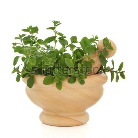 Sage Herb Leaf Sprigs Stock photo © marilyna