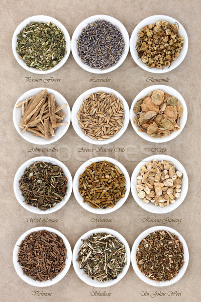 Calming and Sleeping Herb Selection  Stock photo © marilyna