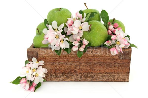 Granny Smith Apples Stock photo © marilyna