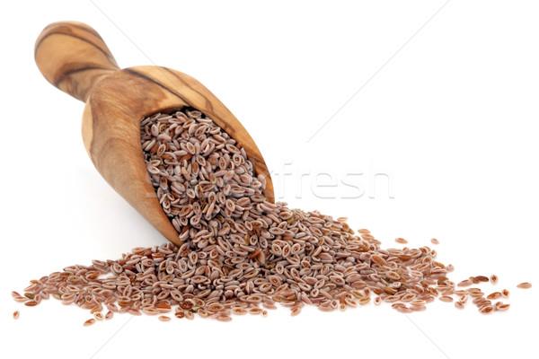 Pink Psyllium Seed Stock photo © marilyna