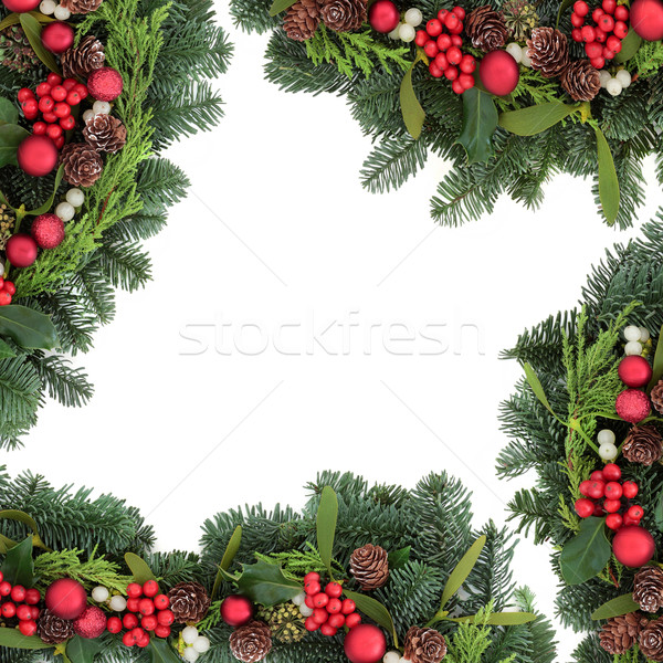 Weihnachten Spielerei Grenze rot Mistel Efeu Stock foto © marilyna