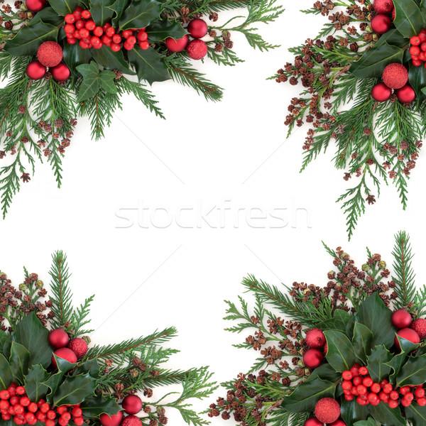 Foto d'archivio: Natale · decorativo · confine · inverno · flora · rosso