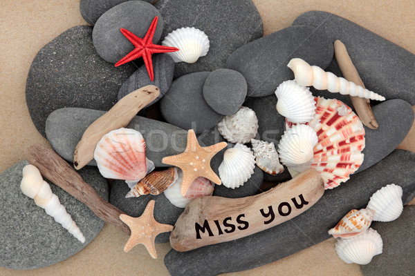 Miss You Stock photo © marilyna