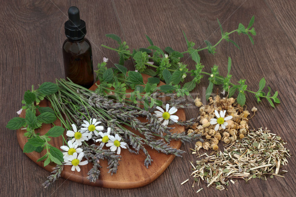Calming Herb Selection Stock photo © marilyna