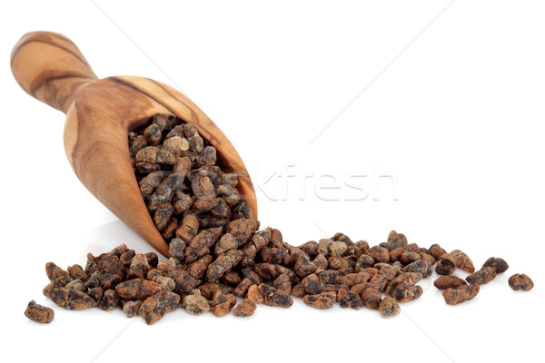 Kardemom zaad olijfolie hout schep witte Stockfoto © marilyna