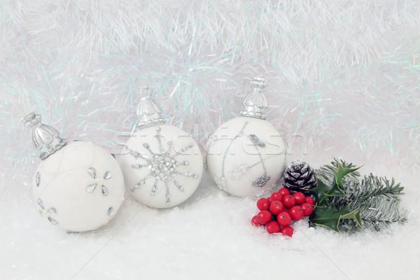 Christmas Scene Stock photo © marilyna