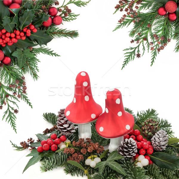 Рождества фантазий лет гриб украшения красный Сток-фото © marilyna