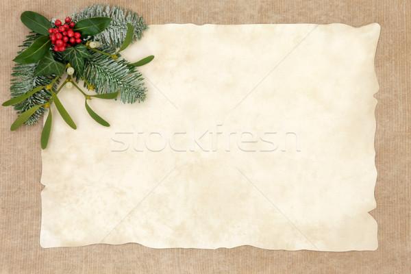 ódivatú karácsony absztrakt keret növényvilág borostyán Stock fotó © marilyna