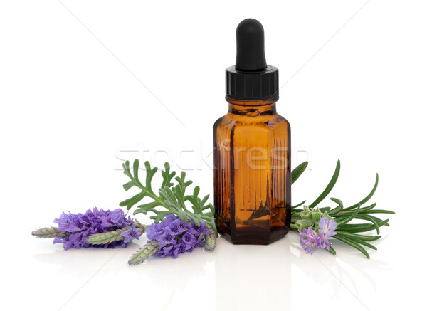 Lavender and Rosemary Essence Stock photo © marilyna