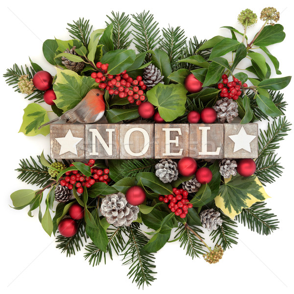 Festive Noel Decoration Stock photo © marilyna