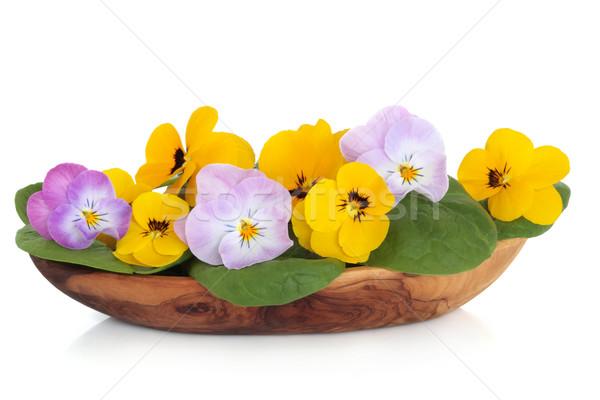 Viola Flower Salad Stock photo © marilyna